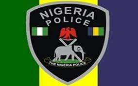 HERDSMEN, FARMERS' CLASH: DPO, 29 Others Killed In Adamawa