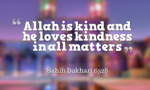 Allah loves kindness hadith 500x300 - Hades Of The Day (Daily Update)